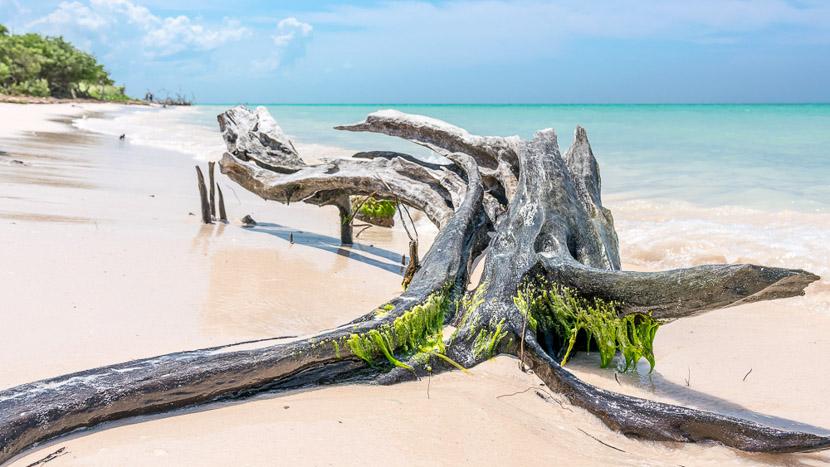 Une plage paradisiaque sur un Cayo, Plages de Cayou Jutias, Cuba