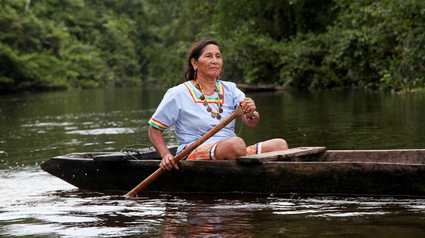 Croisière sur l'Anakonda Amazon Cruises 8 jours/7 nuits, Anakonda Cruises, Equateur