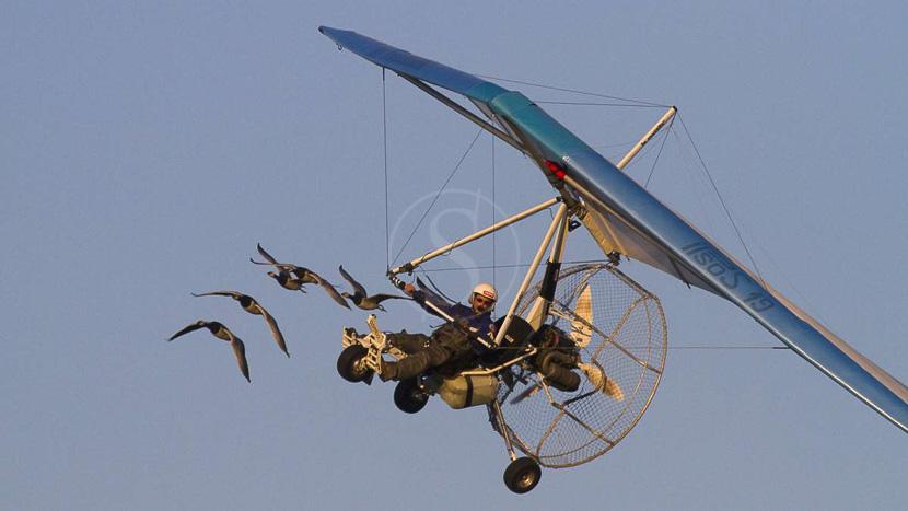 Voler avec les oiseaux, Instants d'absolu Ecolodge & Spa, France © Instants d'Absolu