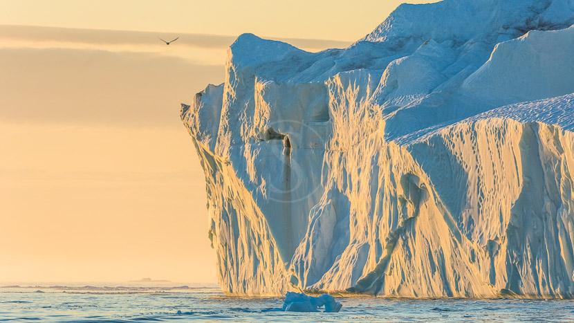 La baie de Disko et le fjord glacé d'Ilulissat, Cote Ouest du Groenland © Shutterstock