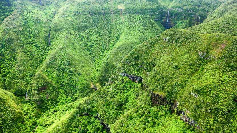 L'île Maurice 100% nature à l'intérieur des terres, Ile Maurice, Océan Indien
