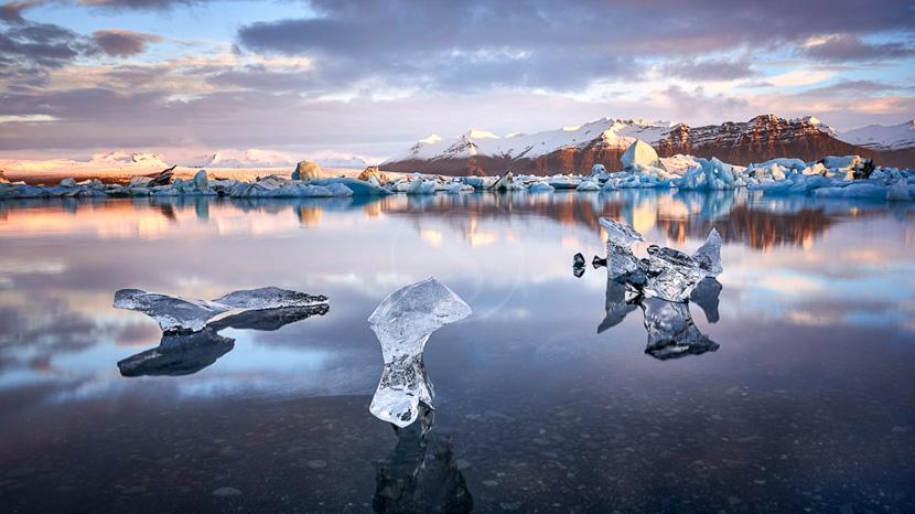 Découverte ornithologique du cap d'Ingólfshöfði, Jokulsarlon, Islande © Sstock