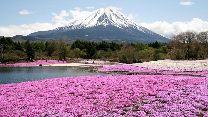 Hakone et Mont Fuji, Mont Fuji, Japon © jnto
