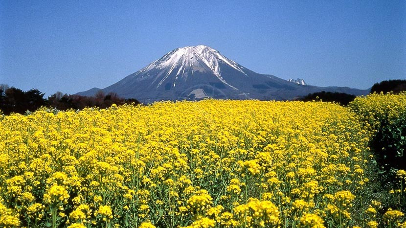 Hakone et Mont Fuji,