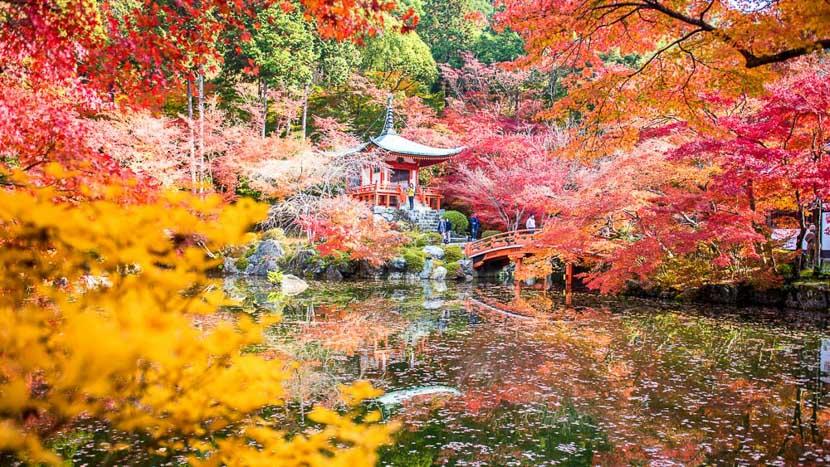 Kyoto, Temple Daigoji à Kyoto, Japon