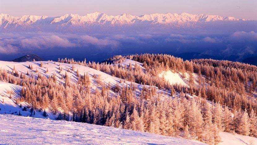 Plateau de Shiga, Paysages de Nagano, Japon © jnto