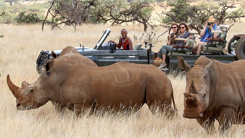 Les rhinocéros de Lewa, Lewa Wilderness, Kenya © Lewa Wilderness