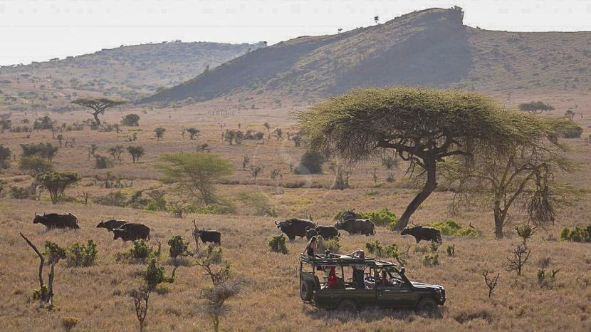 Activités à Lewa Wilderness, Lewa Wilderness, Kenya © Lewa Wilderness