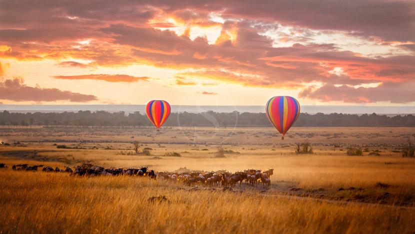 Survol en montgolfière dans le Masai Mara, Survol du Masai Mara en ballon, Kenya © Shutterstock