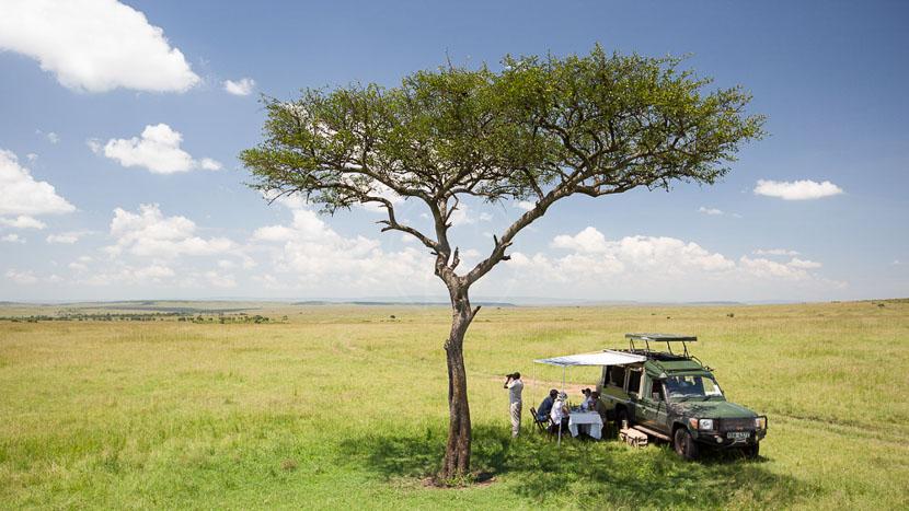 Safari en 4x4 dans le Masai Mara, Sand River Masai Mara, Kenya © Elewana Properties