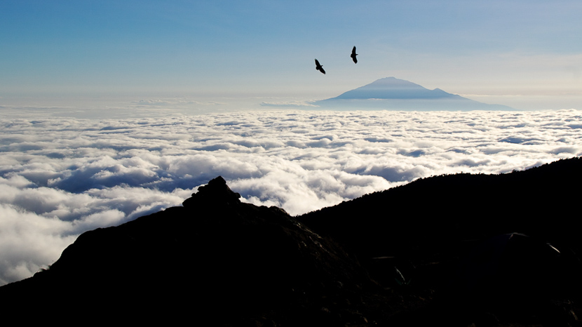 Parc national de Meru, Mont Meru depuis le Kilimanjaro, Kenya