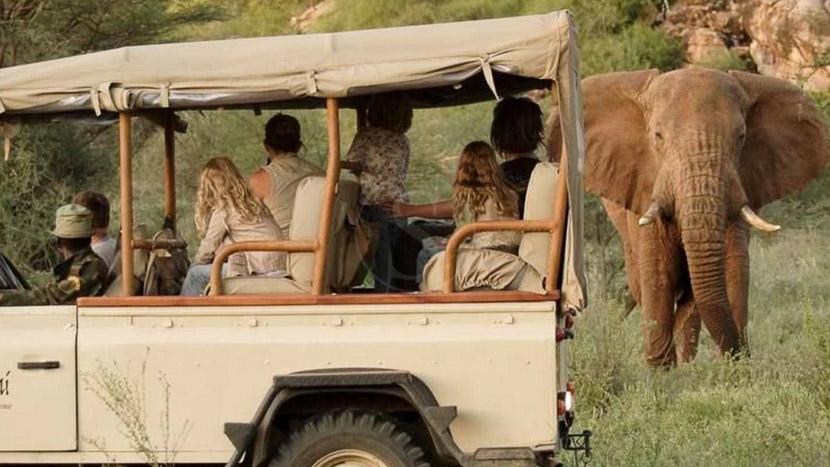 Safari en 4x4 dans la réserve de Samburu, Saruni Samburu, Kenya