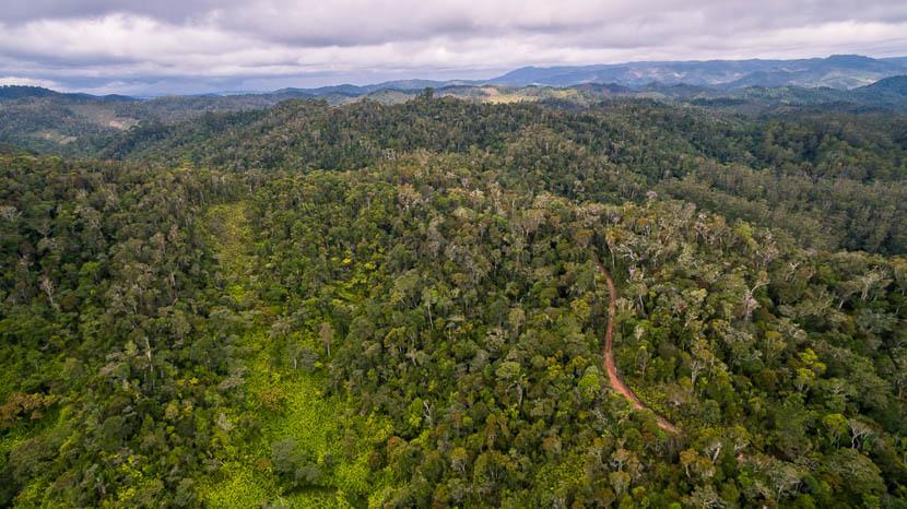 Parc national d'Andasibe, Vue sur la région de Andasibe, Madagascar