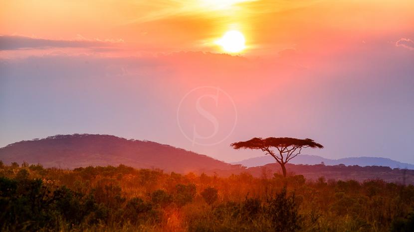 Parc national de Nyika, Parc national de Nyika, Malawi