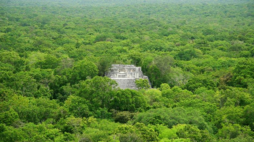 Calakmul, Calakmul - Yucatan, Mexique
