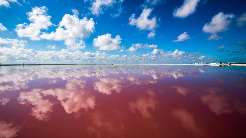 Las Coloradas, Lac salé dans Las Coloradas, Mexique