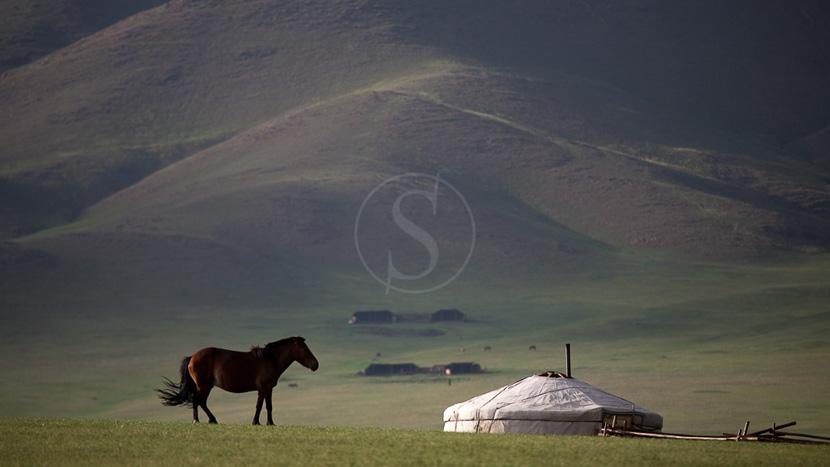 Equitation au Five Rivers Tour Camp, Ambiance de la steppe mongole, Mongolie