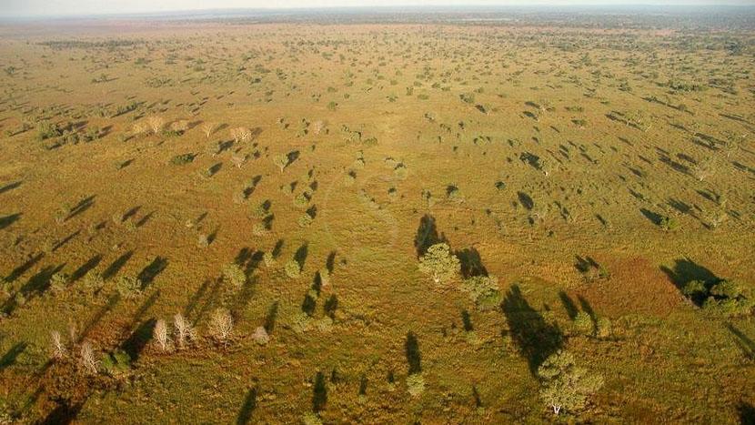 Parc national de Gorongosa, Parc de Gorongoza, Mozambique