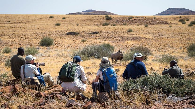 Rhinocéros noirs du Damaraland, Desert Rhino Camp, Namibie © Dana Allen