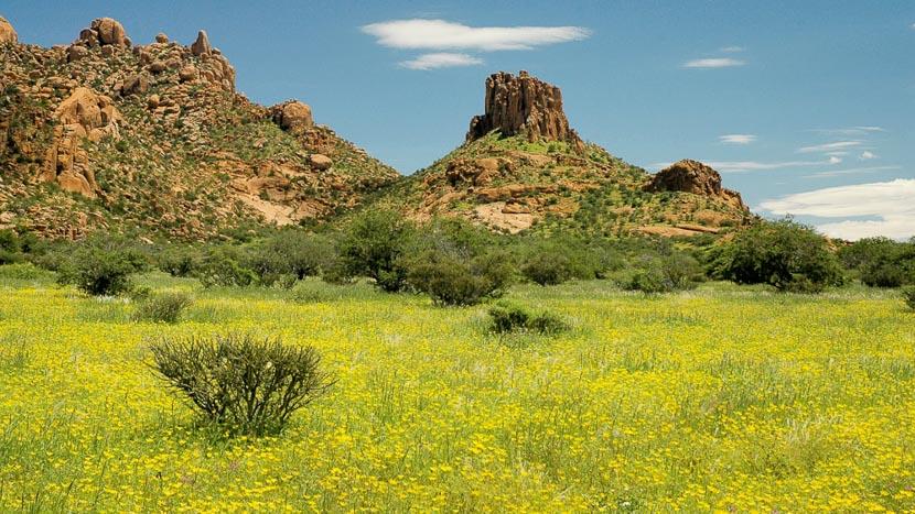 Erongo, Région de Erongo, Namibie