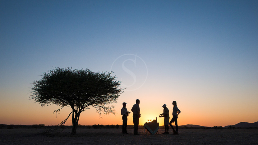 Parc national d'Etosha, Safaris à Ongava Game Reserve, Namibie © Ongava