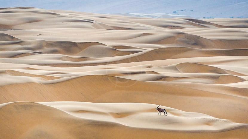 La Namibie vue du ciel, Serra Cafema Lodge, Namibie © Dana Allen - Wilderness