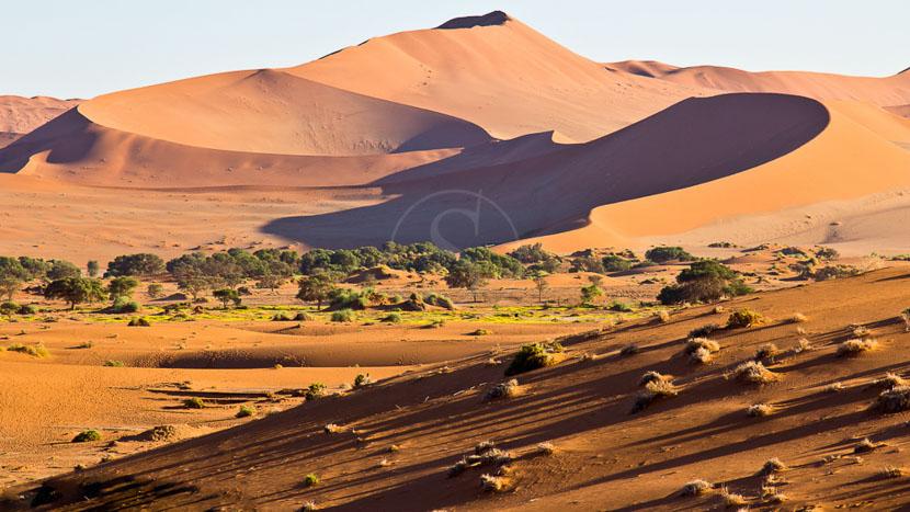 Journée d'excursion à Sossusvlei au départ de Sesriem, Dunes de Sossusvlei dans le Désert du Namib