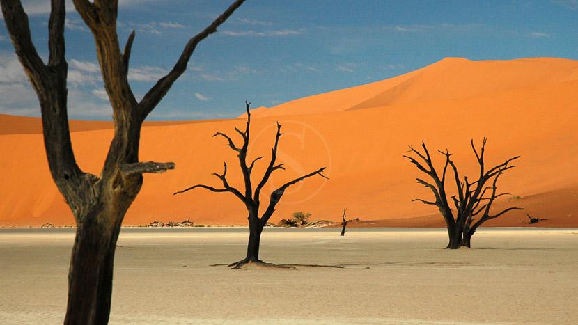 Journée d'excursion à Sossusvlei au départ de Sesriem, Sossusvlei, Namibie