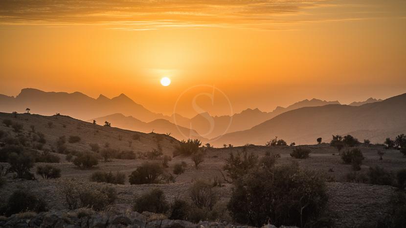 Jebel Akhdar, Monts Hajar, Oman