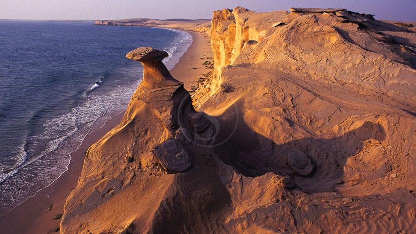 Observer les tortues de Ras-al-Jinz, Ras Al Jins, Oman