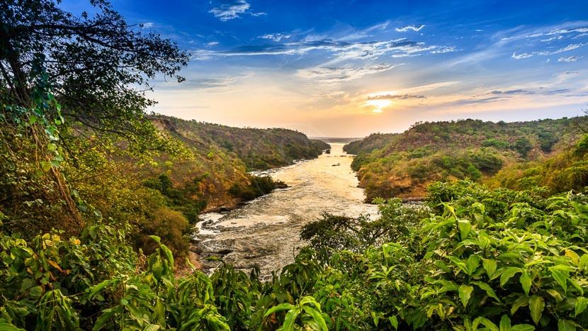 Le Nil Victoria, Le Nil vers les Chutes Murchison, Ouganda
