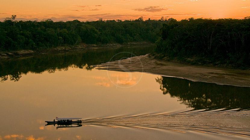 La réserve de Tambopata, Région de Tambopata, Pérou