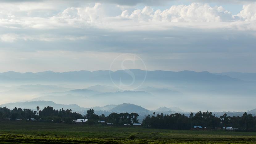 Parc national des volcans, Parc des volcans, Rwanda © L. Guillot