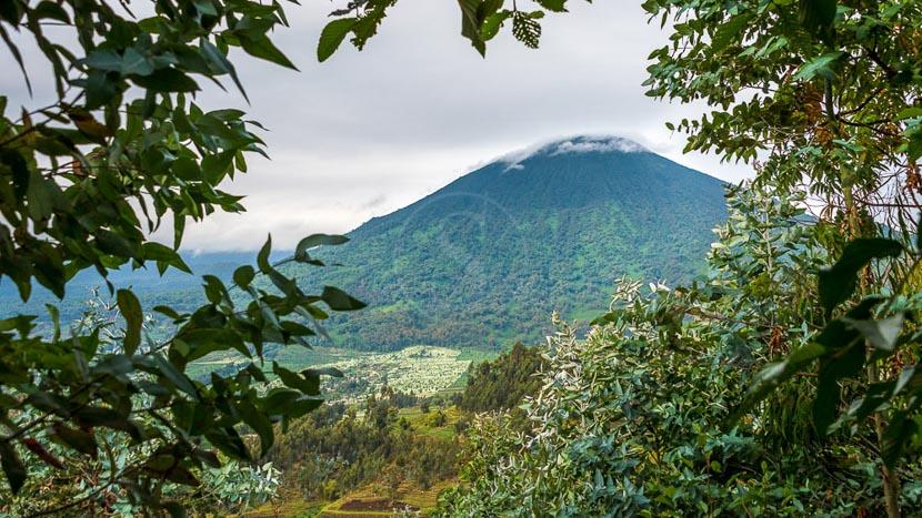 Parc national des volcans, Activités au Bisate Lodge, Rwanda © Wilderness Safaris