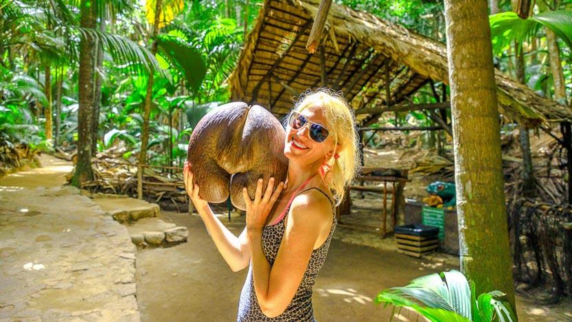 La Vallée de Mai, les Coco-fesses et les perroquets noirs, Vallée de Mai sur Praslin, Seychelles © Shutterstock