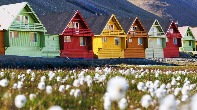 L'essentiel du Spitzberg, Découverte du Spitzberg, Norvège