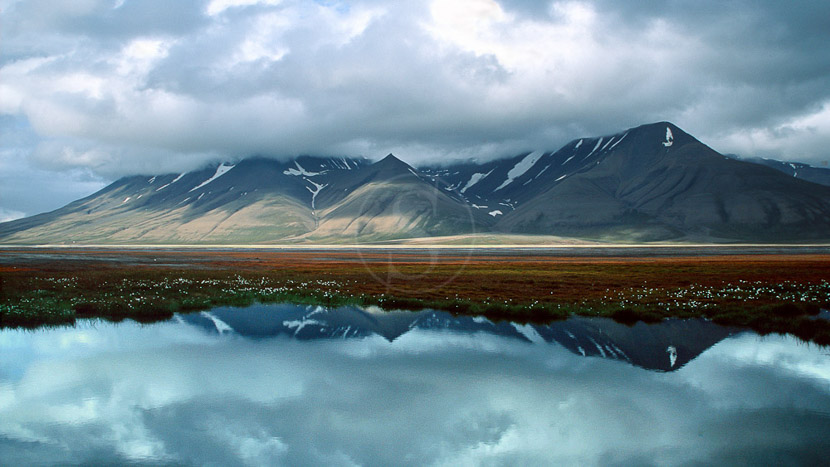 Introduction au Spitzberg, Svalbard, Spitsbergen, Norvège © Olle Carlsson