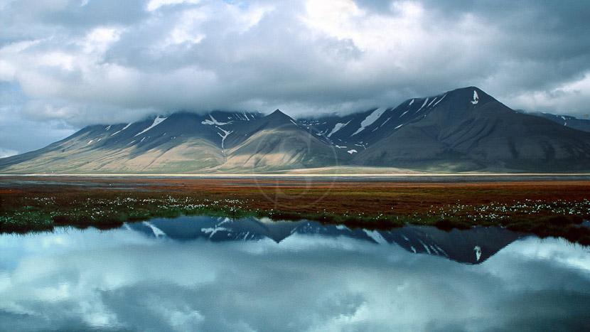 L'essentiel du Spitzberg, Svalbard, Spitsbergen, Norvège © Olle Carlsson