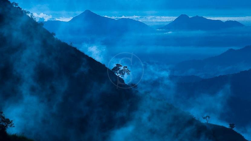 Randonner dans les Knuckles, Knuckles Mountain Range, Sri Lanka © Gilles Georget