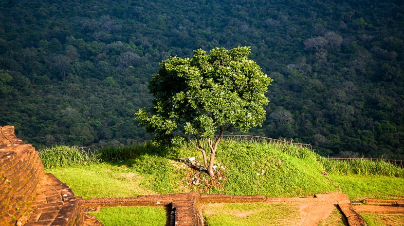 Triangle culturel, Paysage du Sri Lanka depuis le rocher du Lion