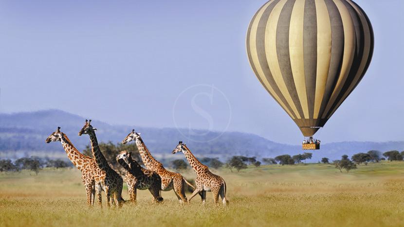Survol de la Tanzanie en montgolfière, Safari en ballon dans le Serengeti, Tanzanie © Singita