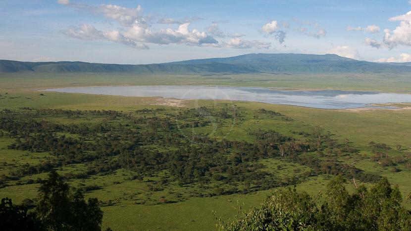 Cratère du Ngorongoro, Cratère du Ngorongoro, Tanzanie