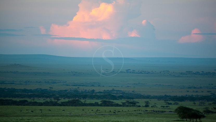 Zone de conservation du Ngorongoro, Safari vers Olduvia, Tanzanie