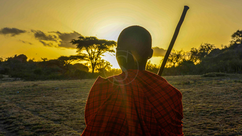 Zone de conservation du Ngorongoro, Olduvai Camp, Tanzanie © Tawisa