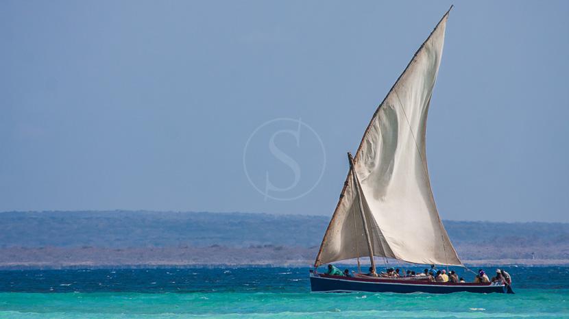 Pemba Island, Dhow au large de Pemba, Mozambique