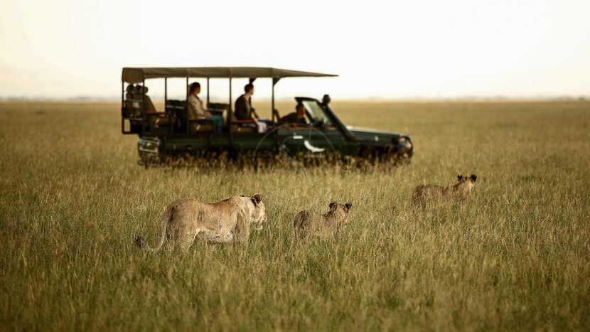 Parc national du Serengeti, Grumeti Serengeti Tented Camp, Tanzanie © &Beyond
