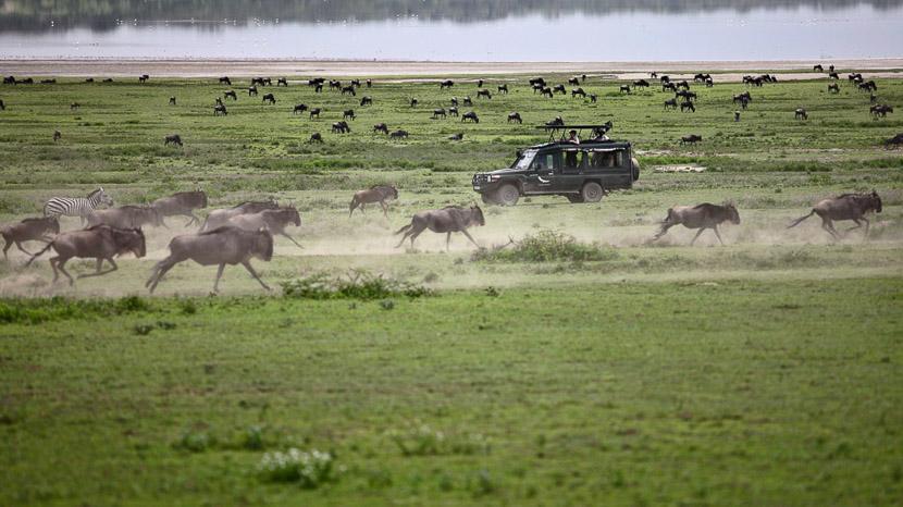 Serengeti Nord, Serengeti Under Canvas, Tanzanie © &Beyond