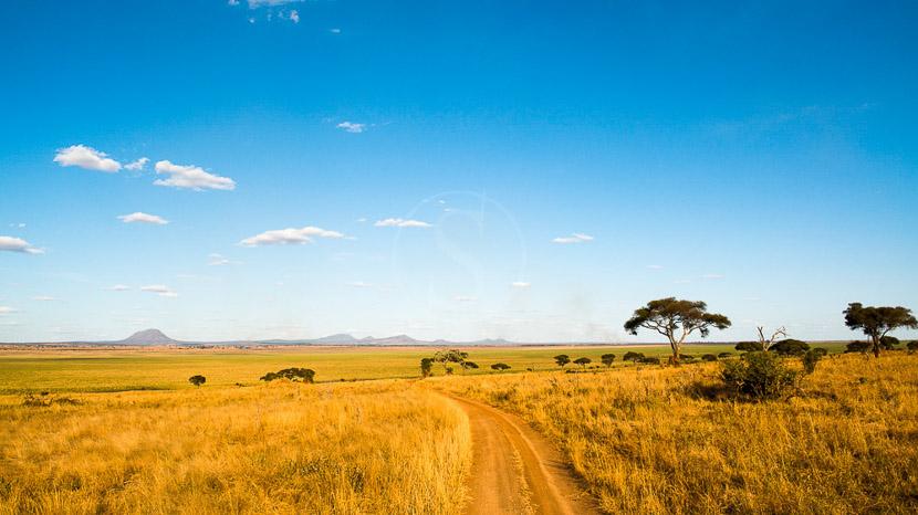 Parc national de Tarangire, Kuro Tarangire, Tanzanie © Nomad - Paul Joynson Hicks