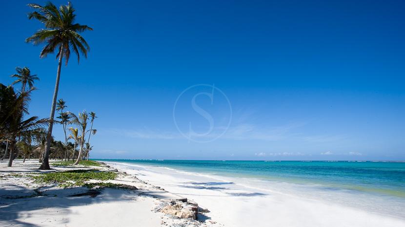 Archipel de Zanzibar, Baraza Zanzibar, Tanzanie