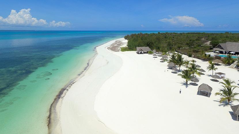 Archipel de Zanzibar, Konokono Zanzibar, Tanzanie